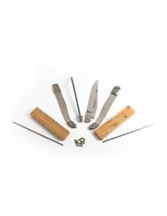 Laguiole en kit 12 cm, abeille soudée, lame seule carbone XC75, mitres inox, manche genévrier-cade
