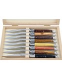 Couteaux de table (couteaux à steak), finition gamme prestige, mitres inox brillant, manche bois divers