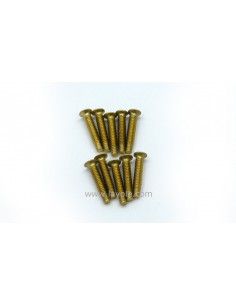 Bag of 10 brass screws