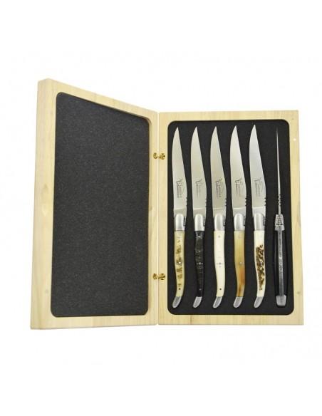 Coffret de couteaux de table Laguiole avec mitres inox mat, manche galbé en corne divers et os